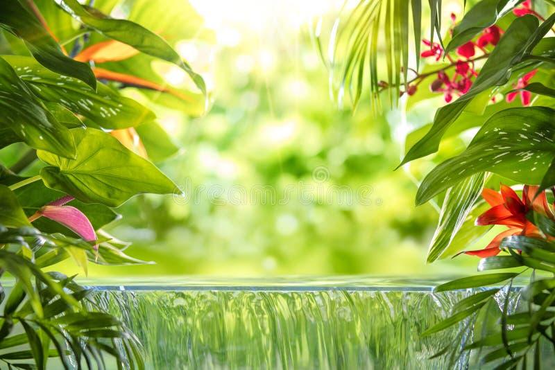 Hojas de palma, flor y cascada tropicales imagenes de archivo