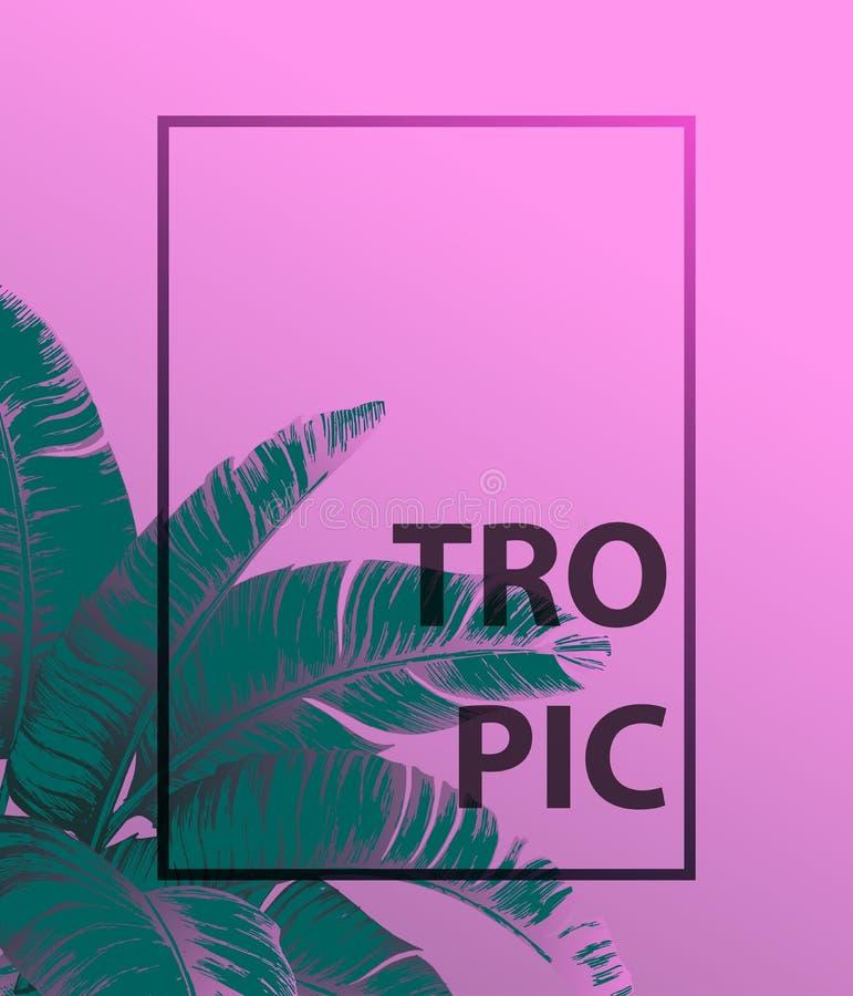Hojas de palma tropicales en fondo rosado Concepto mínimo del verano de la naturaleza Endecha plana Vector tropical de las hojas  ilustración del vector