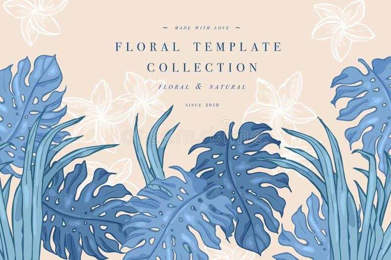 Hojas de palma tropicales Fondo del diseño de la selva o plantilla del cartel Hojas grabadas ejemplo de la selva del vector color ilustración del vector