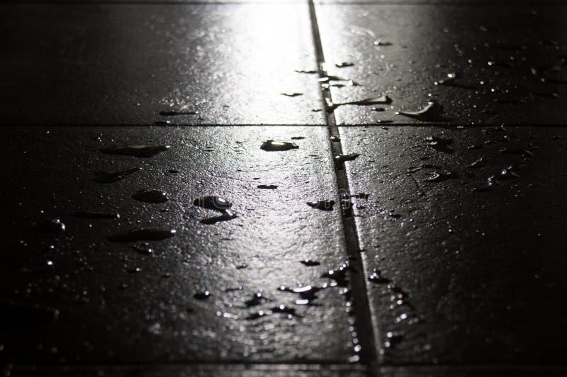 Hojas de piedra mojadas imagenes de archivo