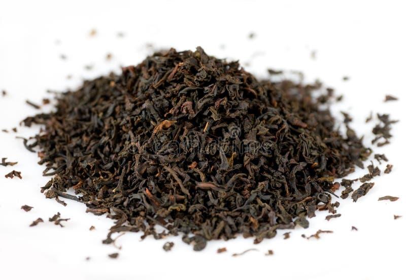 Hojas de té negras foto de archivo libre de regalías
