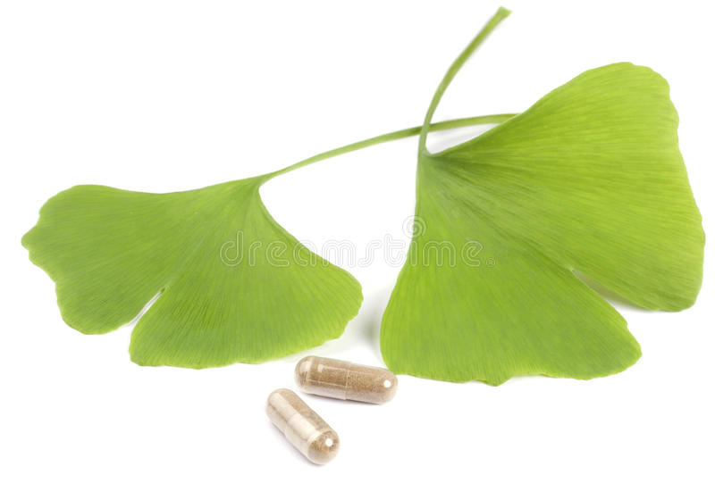 Hojas del árbol de Ginko con las píldoras fotografía de archivo