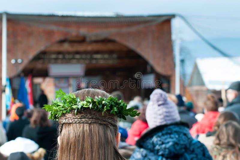 Hojas del verde en trenza del pelo de las chicas jóvenes imagen de archivo libre de regalías