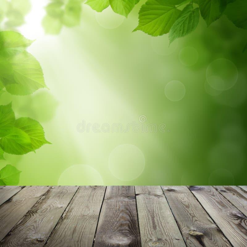 Hojas del verde, luz de Bokeh y tabla de madera vacía imagen de archivo libre de regalías