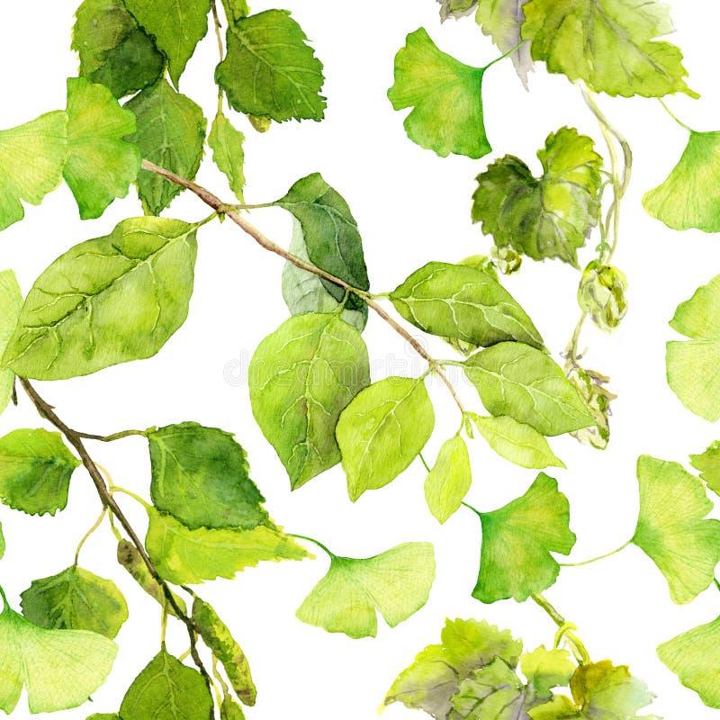 hojas del verde Modelo inconsútil del fondo watercolor stock de ilustración