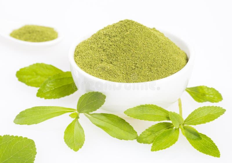 Hojas del verde y polvo frescos del stevia - rebaudiana del Stevia Fondo blanco fotos de archivo