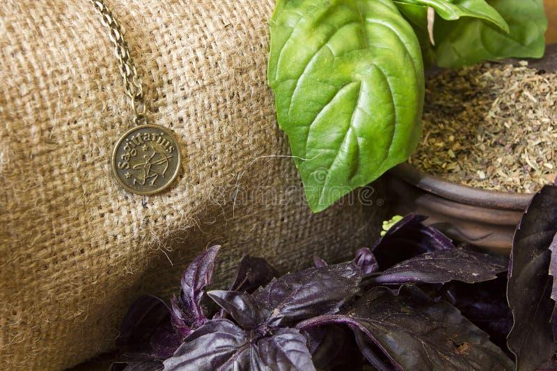 Hojas frescas de la albahaca y una muestra del zodiaco foto de archivo libre de regalías