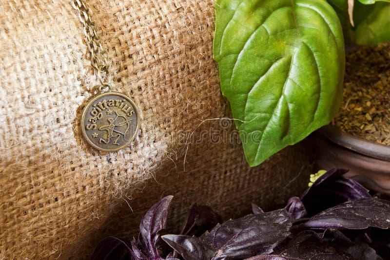 Hojas frescas de la albahaca y una muestra del zodiaco imagen de archivo libre de regalías
