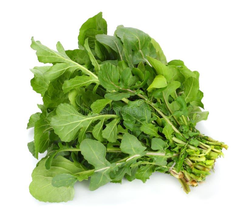 Hojas frescas verdes del rucola aisladas en el fondo blanco Ensalada de Rocket o arugula imagen de archivo libre de regalías