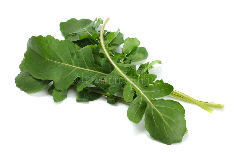 Hojas frescas verdes del rucola aisladas en el fondo blanco Ensalada de Rocket o arugula fotos de archivo libres de regalías