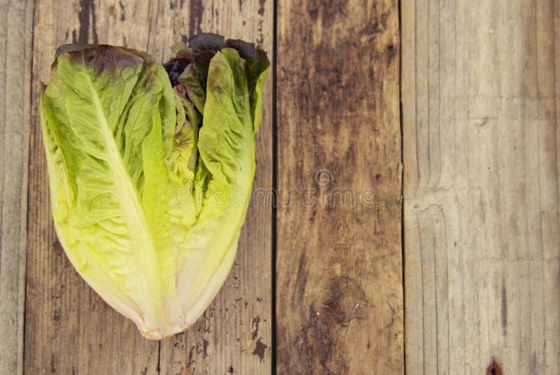 Hojas orgánicas maduras de la lechuga romana de la ensalada verde, en el tablero de madera Copie el espacio Alimento sano imágenes de archivo libres de regalías