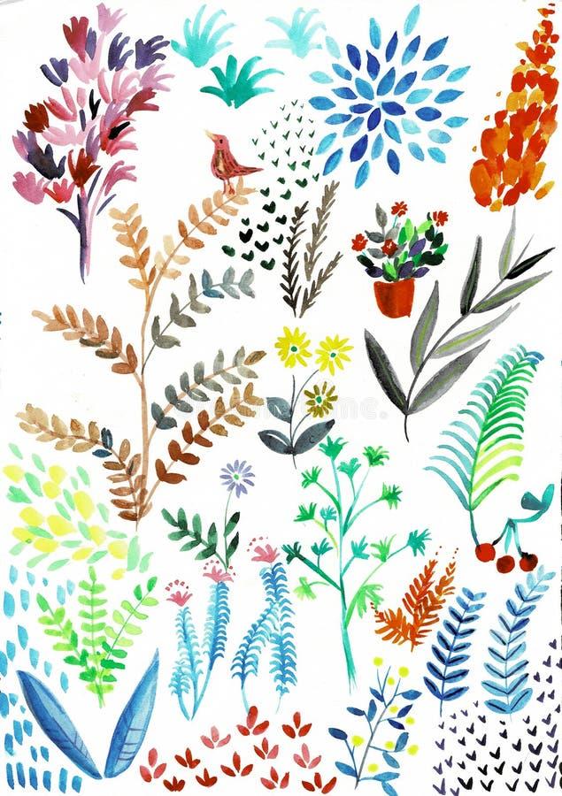 Hojas pintadas a mano y flores ex?ticas de la colecci?n del heliconia de la acuarela aisladas en el fondo blanco libre illustration