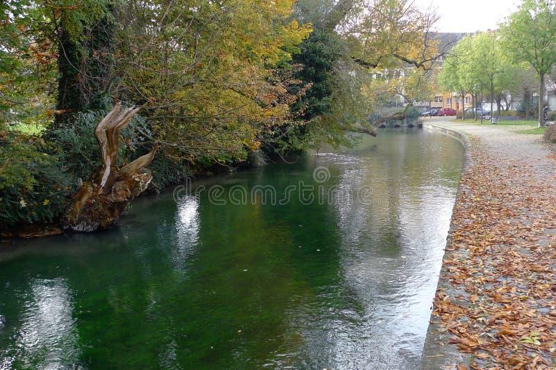 hojas por el río fotos de archivo