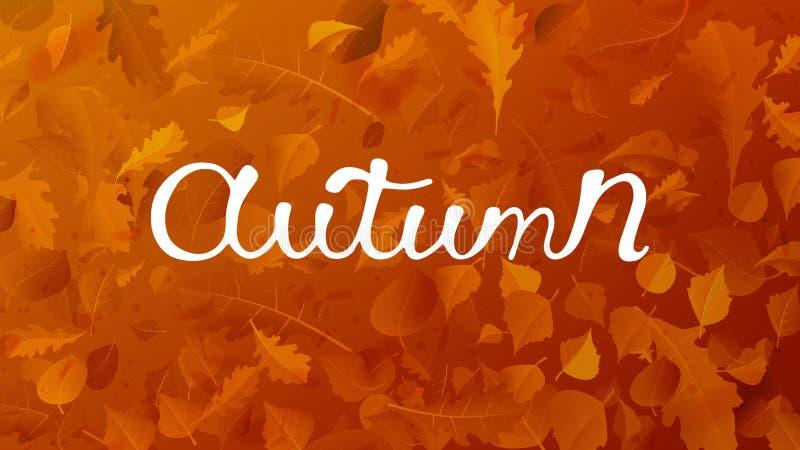 Hojas que caen del vector del otoño común del ejemplo en fondo Caída del follaje y vuelo otoñales de la hoja del álamo en la falt ilustración del vector