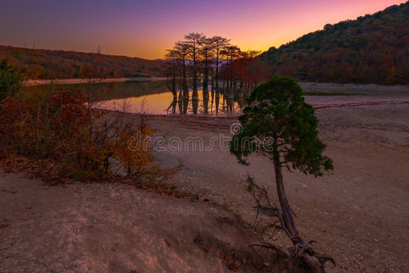Hojas rojas en otoño en las ramas de los árboles de ciprés de pantano en el agua de un lago de la montaña el valle de Sukko foto de archivo libre de regalías