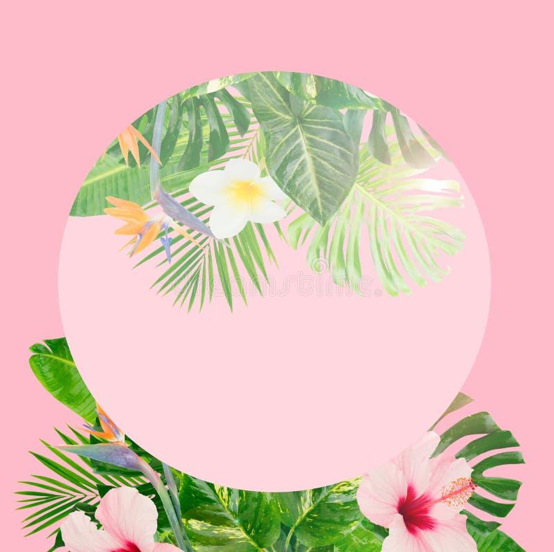 Hojas tropicales del verde libre illustration