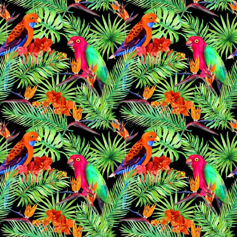 Hojas tropicales, pájaros del loro, flores exóticas Modelo inconsútil de la selva en fondo negro watercolor stock de ilustración