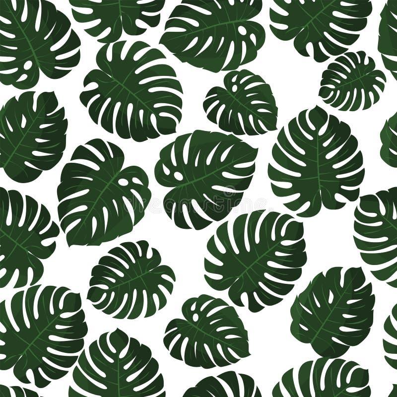 Hojas tropicales Vector Modelo inconsútil en muestra Papel pintado de Monstera Textura exótica con la hoja del hawaiian del verdo ilustración del vector