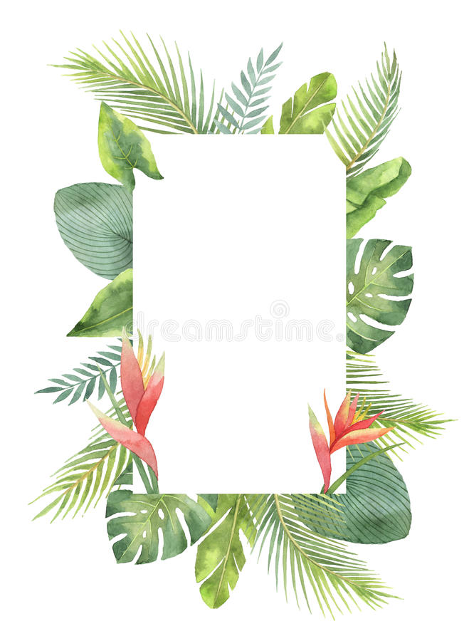 Hojas tropicales y ramas del marco rectangular de la acuarela aisladas en el fondo blanco ilustración del vector