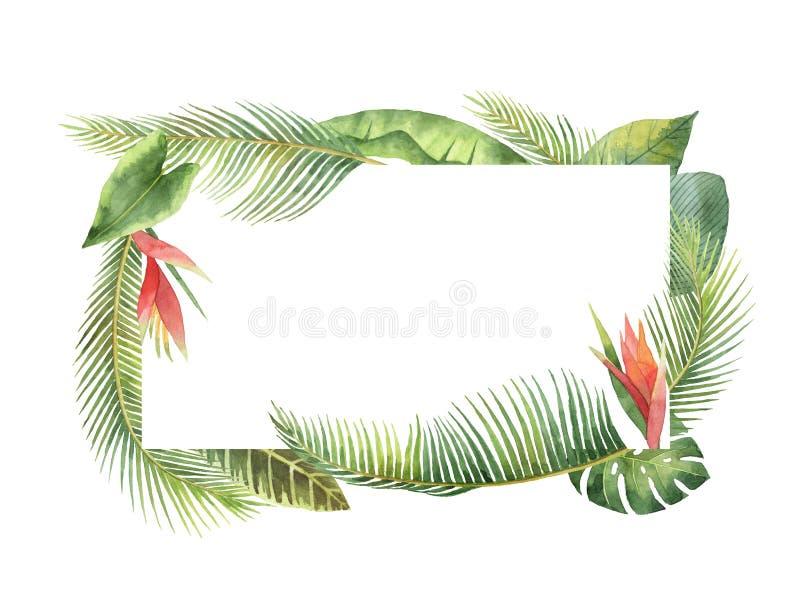 Hojas tropicales y ramas del marco rectangular de la acuarela aisladas en el fondo blanco stock de ilustración