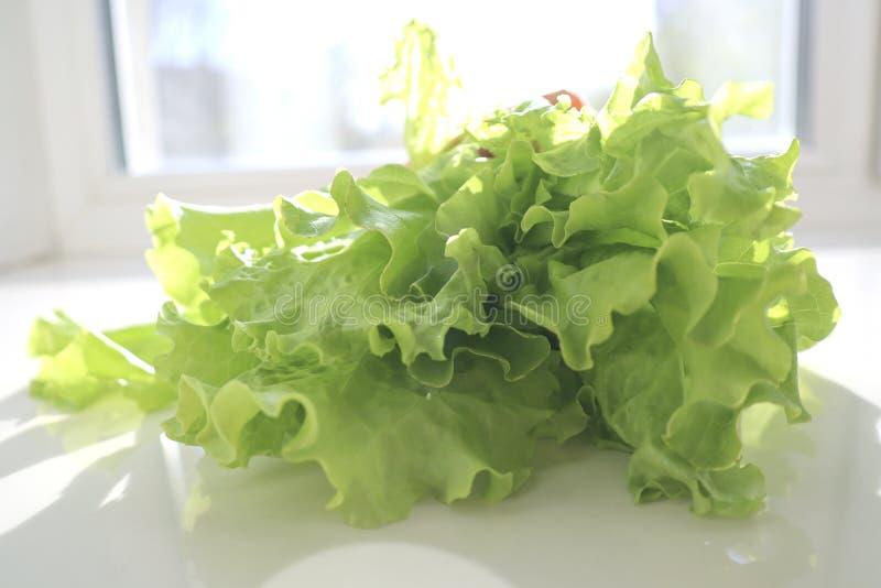 Hojas verdes frescas de la ensalada de la lechuga en el fondo blanco fotos de archivo libres de regalías