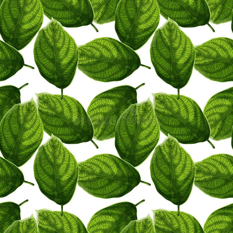 Hojas verdes texturizadas brillantes y coloridas en modelo inconsútil del fondo blanco ilustración del vector