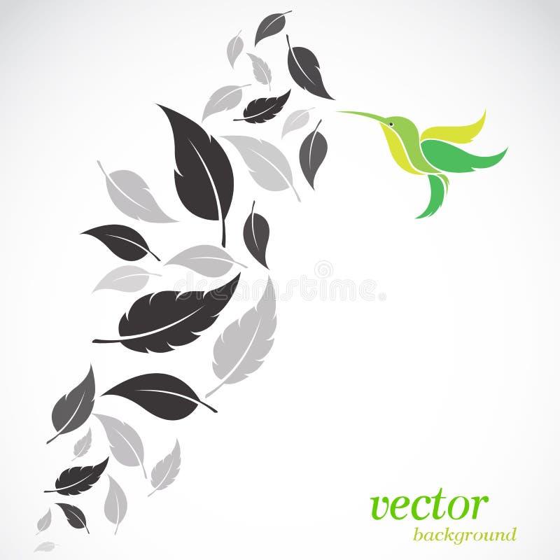 Hojas y colibríes del extracto libre illustration