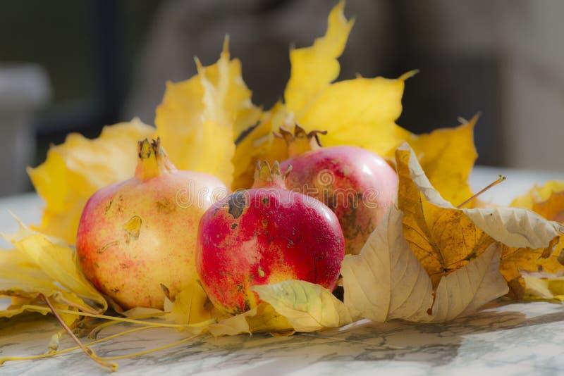 Hojas y granada de otoño Granada orgánica madura en vida inmóvil con la hoja amarilla Textura estacional del fondo Foliag del oto foto de archivo libre de regalías