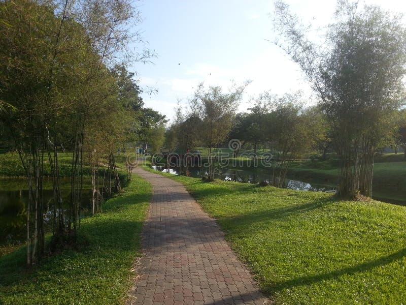 Hoje está indo ao parque para uma caminhada em domingo Today& x27; o tempo de s é muito bom Tome muitas fotos Tenha por favor um  fotografia de stock