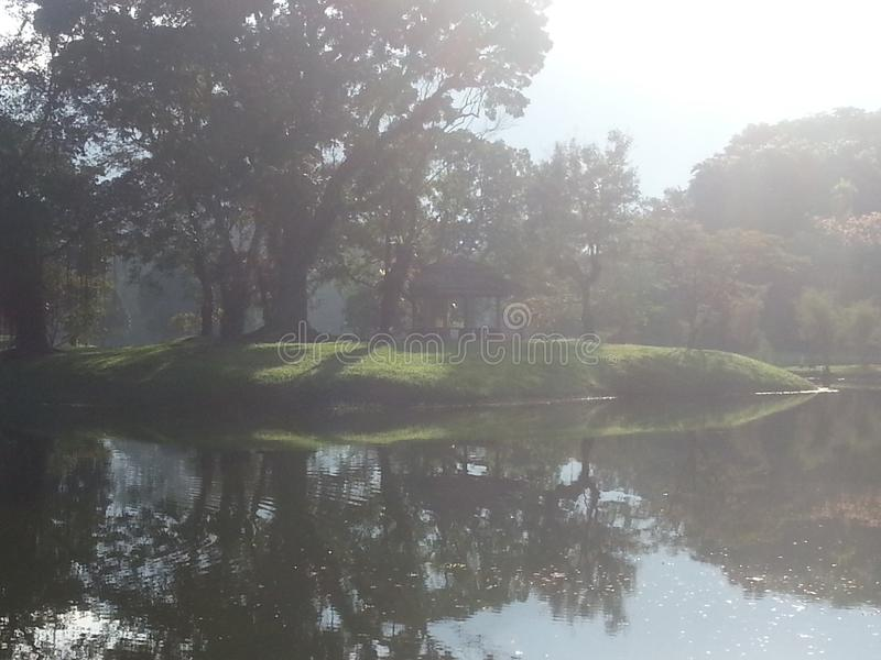 Hoje está indo ao parque para uma caminhada em domingo Today& x27; o tempo de s é muito bom Tome muitas fotos Tenha por favor um  foto de stock royalty free