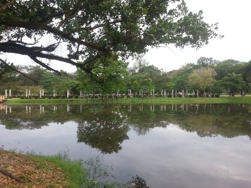 Hoje está indo ao parque para uma caminhada em domingo Today& x27; o tempo de s é muito bom Tome muitas fotos Tenha por favor um  imagem de stock royalty free