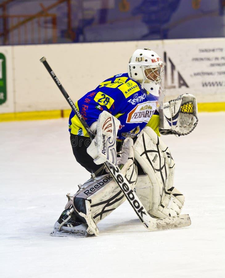 Hokejowy bramkarz g.Vallini zdjęcie stock