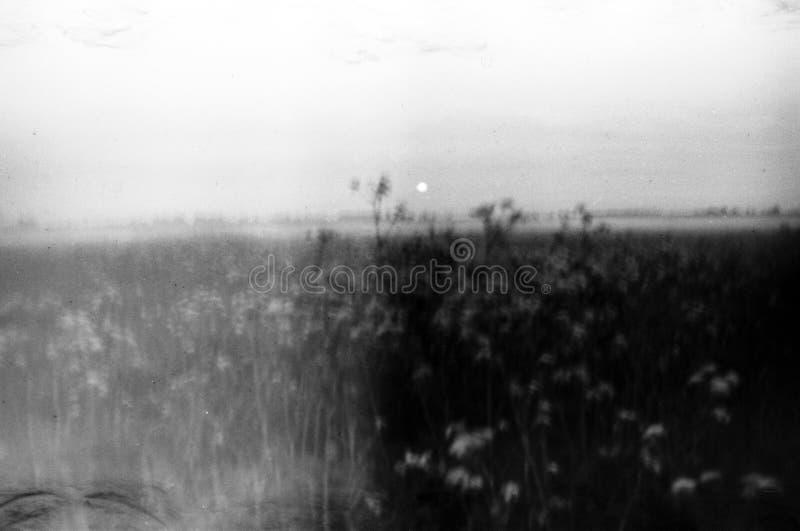 Hokku-Poesietriptychon lizenzfreies stockbild