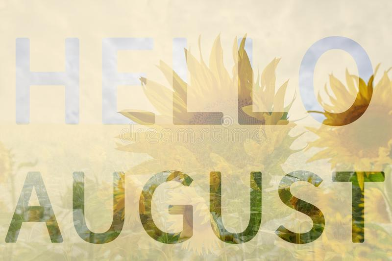 Hola, agosto libre illustration