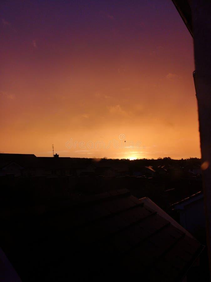 Hola anaranjado de la mañana fotografía de archivo