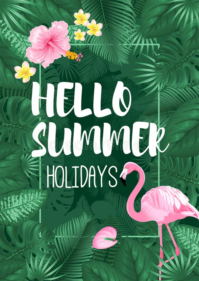Hola diseño tropical del marco del verano ilustración del vector