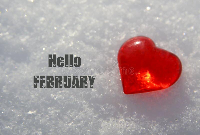 Hola febrero Corazón rojo decorativo en fondo blanco natural de la nieve Concepto de las vacaciones de invierno o de día de San V imagen de archivo libre de regalías