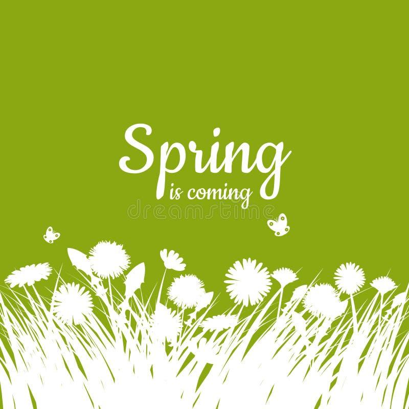 Hola letras de la primavera con la hierba verde y la manzanilla en fondo verde Fondo del resorte Diseño para las banderas, tarjet ilustración del vector