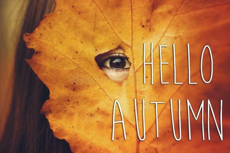 Hola muestra del texto de la caída del otoño en la mirada hermosa del ojo morado de la muchacha fotos de archivo