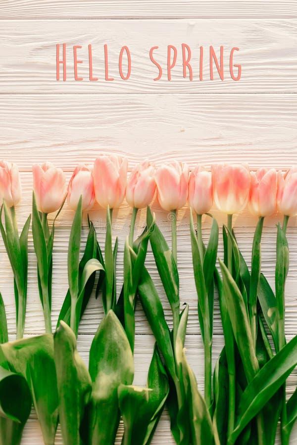 Hola muestra del texto de la primavera, tulipanes rosados hermosos en el wo rústico blanco foto de archivo