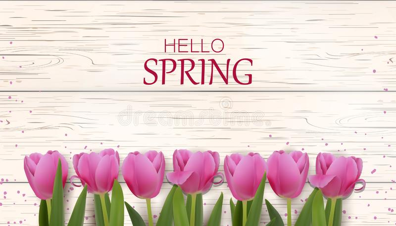 Hola primavera Flor rosada hermosa del tulipán en fondo de madera días de fiesta de la primavera Plantilla fresca del diseño para libre illustration