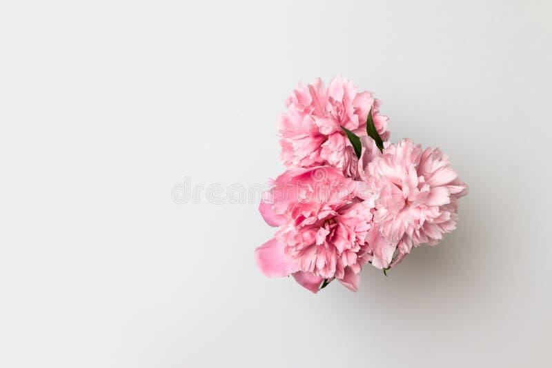 Hola primavera Flores de la primavera en florero fotos de archivo libres de regalías