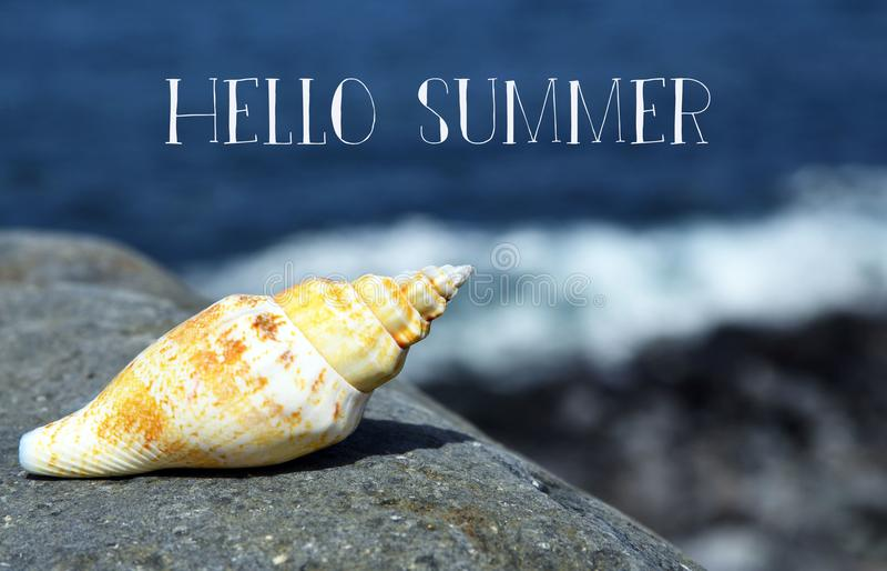 Hola tarjeta de felicitación del verano con la concha marina en la playa por el océano imagen de archivo