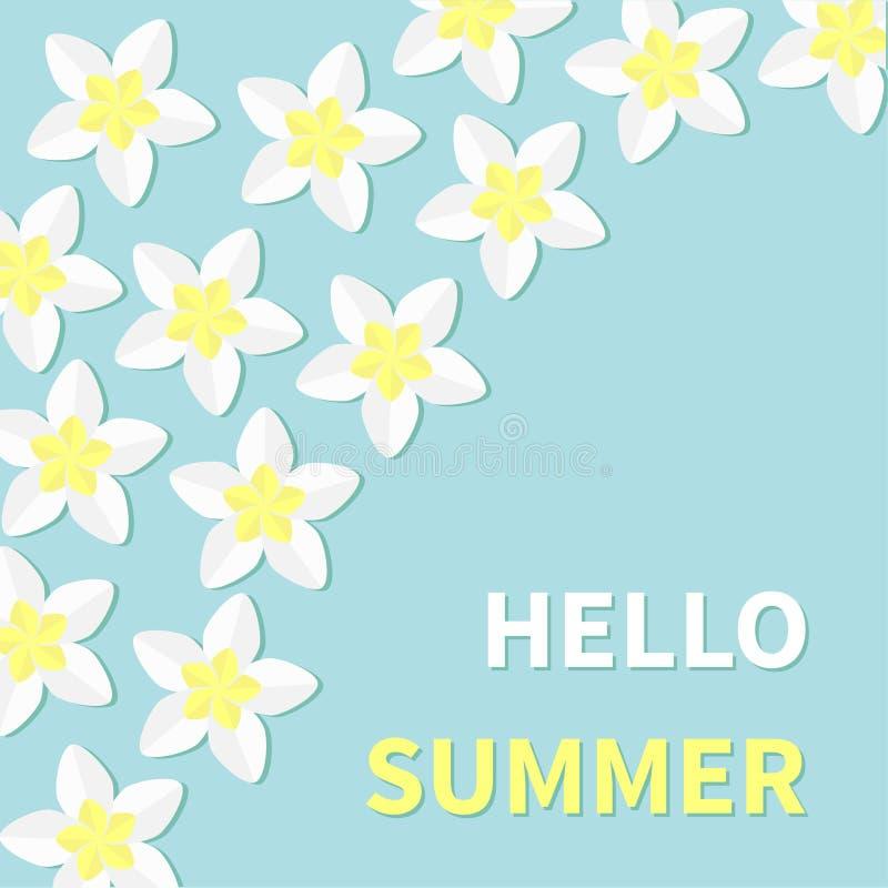 Hola tarjeta de felicitación del verano Sistema tropical del icono de la flor del Plumeria Frangipani Hawaii, marco de la flor de libre illustration