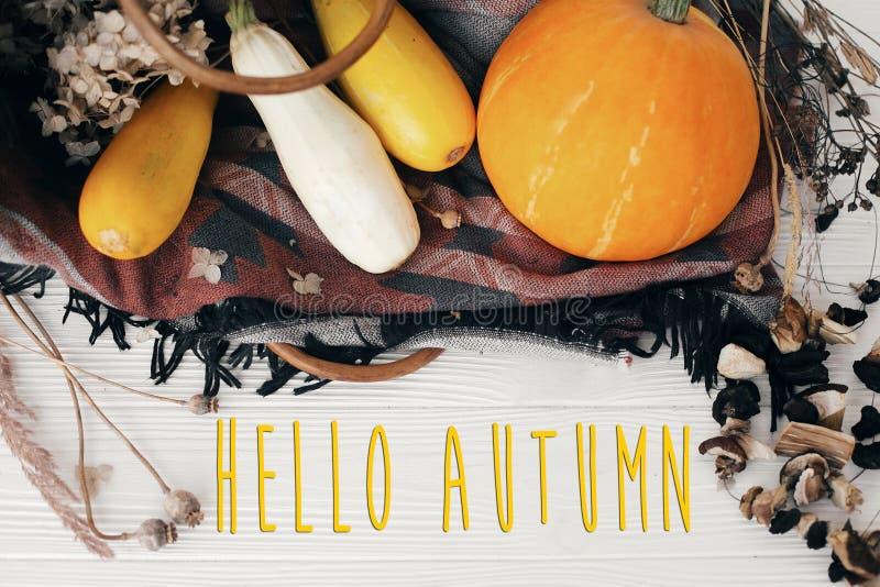Hola texto del otoño, concepto de la tarjeta de felicitación de las estaciones Caída agradable s foto de archivo libre de regalías