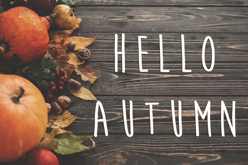 Hola texto del otoño Hola muestra de la caída en la calabaza, verduras del otoño fotos de archivo libres de regalías