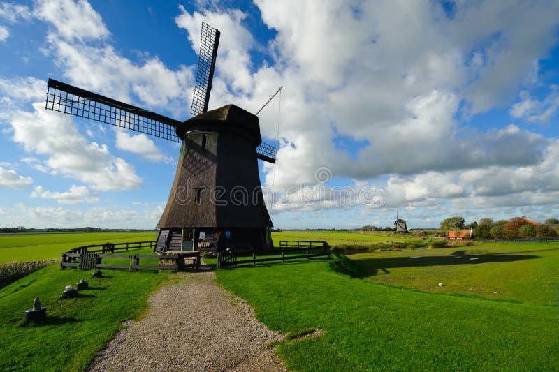 holandia piękny krajobrazowy wiatraczek obraz royalty free