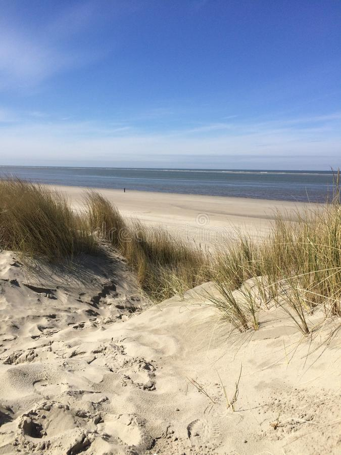 Holandia plaża zdjęcia royalty free