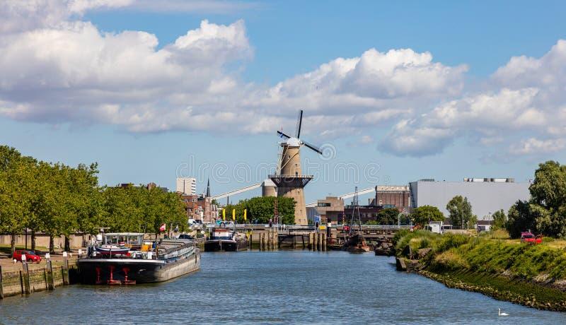 holandie Rotterdam Wiatraczek przy rzecznym Maas blisko schronienia obrazy royalty free