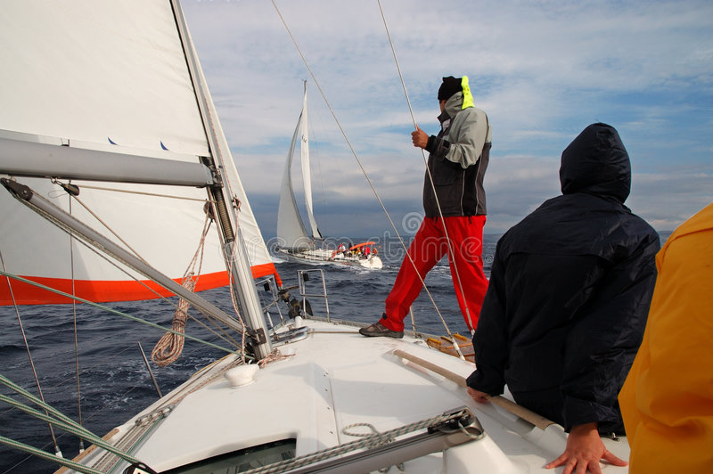 Download Hold on! stock image. Image of speed, active, cruise, crossing - 1402461